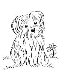 A realistic picture reference book for. Puppy Coloring Page Art Starts