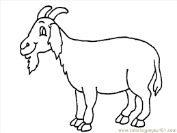 Small Picture Goat Coloring Page 10 Coloring Page Free Goat Coloring Pages