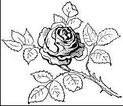 You can print or color them online at getdrawings.com for absolutely free. Rose Coloring Pages Realistic 101 Coloring