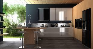 black white oak kitchen