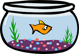 fish bowl clipart. Delighful Clipart Image  Fish BowlPNG  Club Penguin Wiki FANDOM Powered By Wikia Png Inside Bowl Clipart S