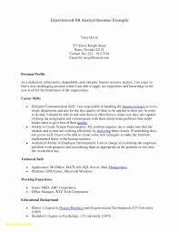 Personal Resume Template Microsoft Word Unique 28 Hybrid Resume