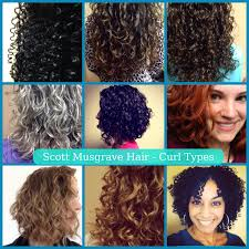 Curl Type Chart Devacurl Prices How To Contact Curl Type Scott Musgrave Hair