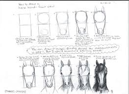 horse face drawing front. Contemporary Face For Horse Face Drawing Front A