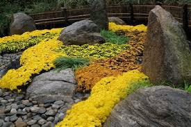 A Japanese rock garden at The New York Botanical Garden mixes  autumn-colored blooms with interesting stone placement and shapes  suggesting mountains, ...