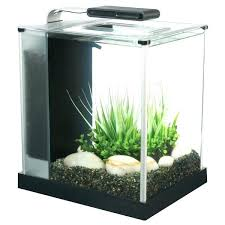 office desk aquarium. Aquarium For Office. Office Fish Explore Freshwater Tank Desk Best Tanks . -