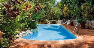 Backyard Pools Designs Beauteous The History Of Pools SwimmingPool