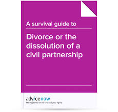 Domestic Partnership Agreement Mesmerizing A Survival Guide To Divorce Or Dissolution Of A Civil Partnership