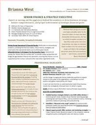 Chief Financial Officer Resumes 24 Chief Financial Officer Resume Example Resume Template Online
