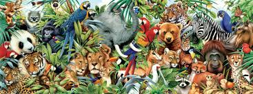 real jungle animals. Perfect Jungle Jungle Animals Real Life Wallpapers Hd Inside