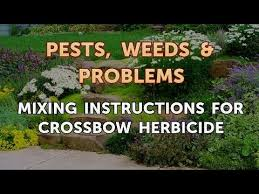 Crossbow Mixing Chart Mixing Instructions For Crossbow Herbicide Youtube