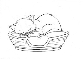 Coloriage Chat Panier 1001 Animaux