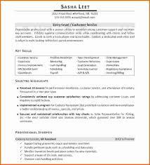 Help Desk Officer Resume Resume Over One Page Resume