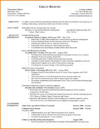 Awe Inspiring Security Resume Tomyumtumweb Com