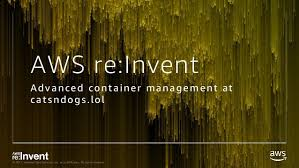 con advanced container management at catsndogs lol 2017 amazon web services inc or its affiliates