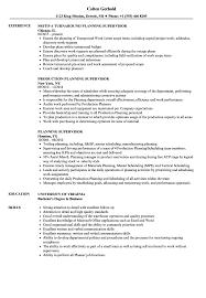 Planning Supervisor Resume Samples Velvet Jobs