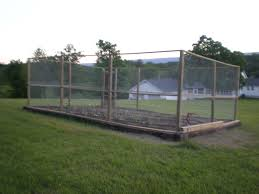 wire fence ideas. Chicken Wire Fencing For Garden. I Like The Corner Gate Idea. Fence Ideas S
