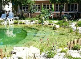 natural looking in ground pools. Natural Looking Inground Swimming Pools In Ground Pool O