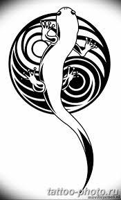 фото рисунка татуировка саламандра 30102018 057 Salamander