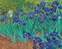 Irises Getty Museum