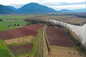 Fertile Blueberry Farmland Nestled Along The Banks Of The