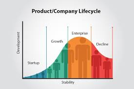 Organizational Life Cycle Chart Collaborative Innovation Is Your Organizational Structure
