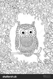 Cute Owl And Floral Frame Coloring
