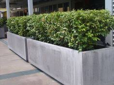 This 2000 trough planter is part of Quatro Design's 500 Series of GRC concrete  planters that range in length from to