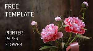 Peony Paper Flower How To Make Paper Peony From Printer Paper Free Template