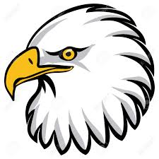 eagles clipart free download. Plain Free Free Download And Eagles Clipart Download W