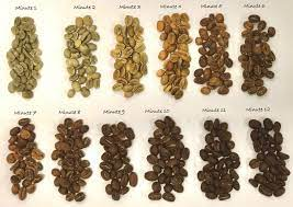 Kaldi is said to have invented coffee in 750 ad when he noticed how excited his goats became after chewing the beans from a coffee plant. How Coffee Was Discovered Buzz Cafe