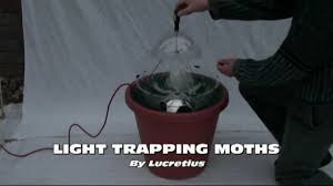 Robinson Light Trap Mothing 100 Light Trapping Moths Youtube