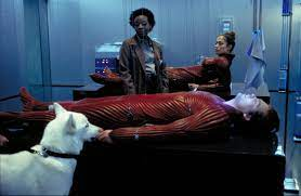 The Cell (2000) - Photo Gallery - IMDb