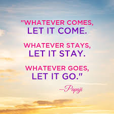 Let It Go Quotes Gorgeous 48 Quotes From Papaji Universoul Awakening