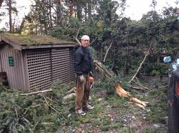 Windstorm on Gulf Islands: 'It was close to terrifying'   Times ...