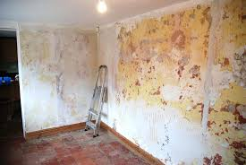 elegant removing wallpaper from plaster walls how to remove wallpaper house method how do i remove