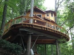 tree house designs. Brilliant Designs Tree House Modren House With And Tree House Designs