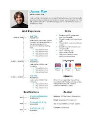 Timeline Resume Template Timeline Cv Template In Microsoft Word How