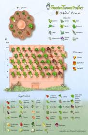 Companion Planting Garden Design Interactive Drag Drop Planting Designer And Salad Tower
