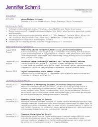 Lsu Sorority Resume Professional Resume Templates