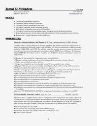 It Asset Management Resume Sample Awesome 10 It Project