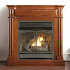 ventless fireplace less gas logs insert home depot reviews
