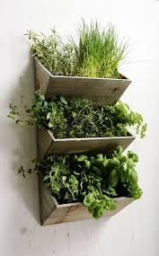 outdoor herb garden kit. Beautiful Kit Shabby Chic Large Wall Hanging Herbs Planter Kit Wooden Kitchen Garden  Indoor To Outdoor Herb Pinterest