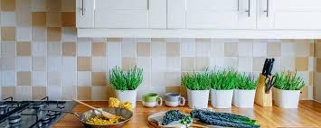 kitchen cabinets colour combination