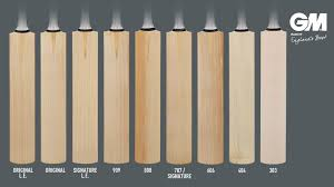 Gm Australia Blog How To Choose A Cricket Bat