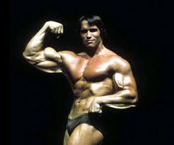 Arnold Gym Workout Chart Arnold Schwarzenegger Workout Plan Exercise Com