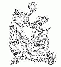 Small Picture Beautiful Dragon Doodle Art Abstract Coloring Page For Adults