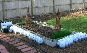 cinder blocks raised beds garden designs anyone here use cement blocks for raised beds cinder block
