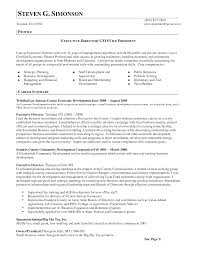 sample executive director resume examples in pdf alib sample executive director resume examples in pdf alib executive director resume sample