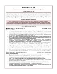 Nurse Manager Resume Inspiration Executive Resume Samples